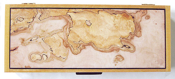 Spalted maple burl box top - Decorative wood desktop box or pen box