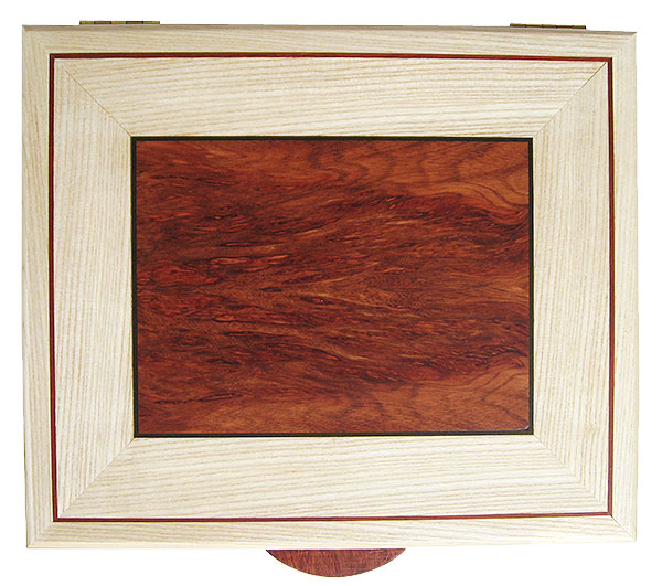 Bloodwood burl inlaid beached ash box top - Handcrafted decorative large keepsake box