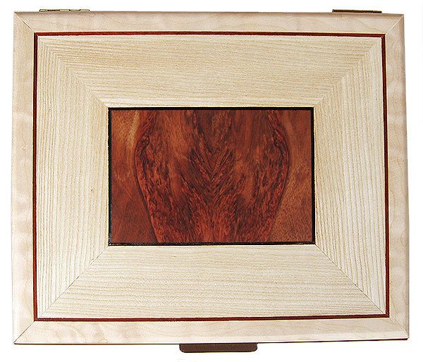Bloodwood burl and quarter-sawn bleached ash with ebony and bloodwood striping box top - Handmade decorative large wood keepsake box