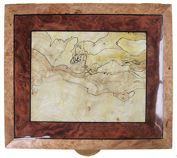 Handcrafted large wood box top - Blackline spalted maple burl framed in redwood burl and maple burl with ebony stringing