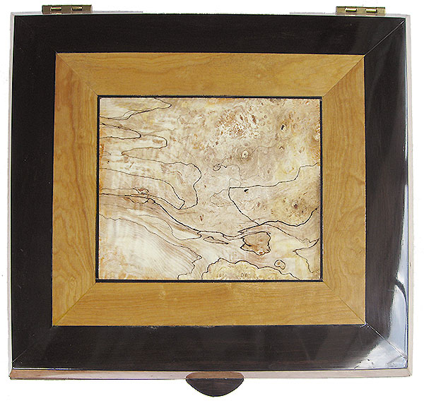 Large wood keepsake box top - Blackline spalted maple burl center framed in Ceylon satinwood and African Blackwood
