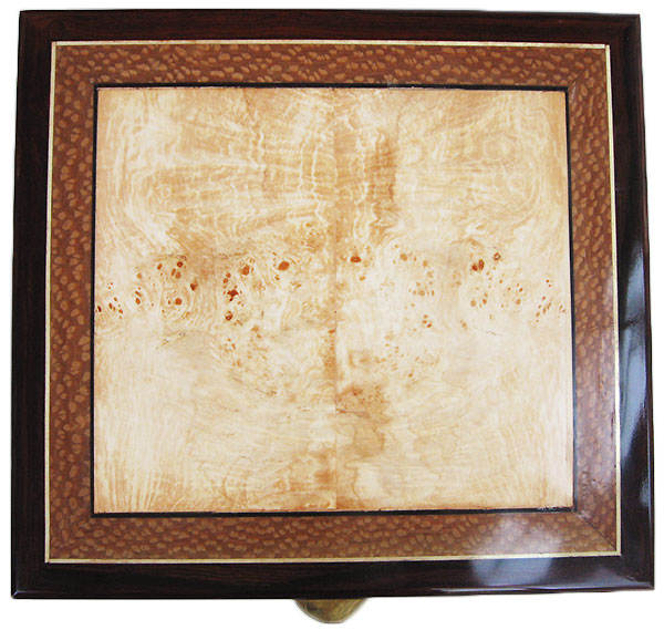 Spalted maple burl framed in lace wood and cocobolo - Handcrafted large keepsake box or document box top