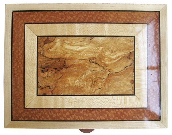 Handmade wood box top - Spalted maple center framed in maple and lacewood with ebony stringings