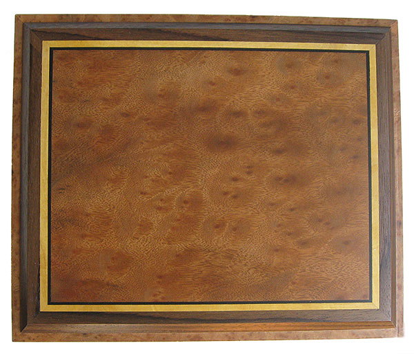 Large wood keepsake wood box top - Camphor burl framed in eboy, Ceylon satinwood and Indian rosewood