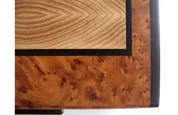 Amboyna burl box top inlaid with end grain elm trimmed in ebony - Close up