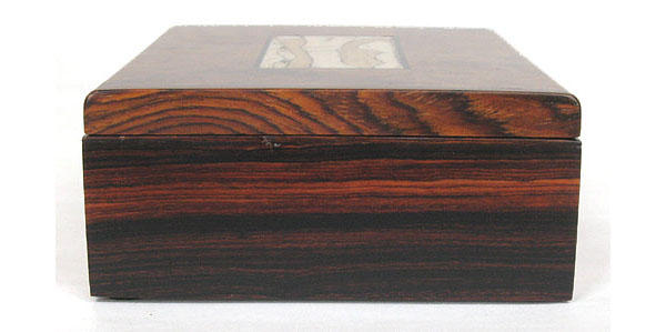 Cocobolo end of decorative amboyna burl box