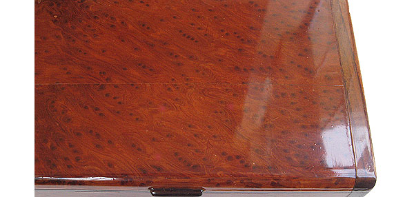 Redwood burl box top close up