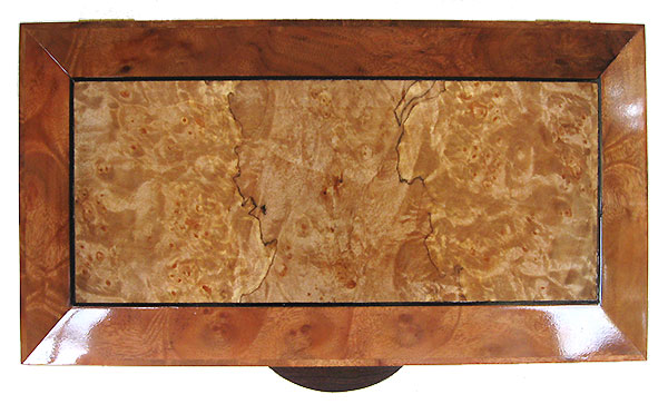 Maple burl center  framed in camphor burl with ebony striping box top - Handcrafted decorative wood keepsake box