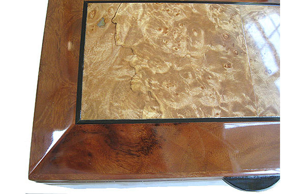 Maple burl framed in camphor burl box top close up - Handcrafted decorative wood box, keepsake box
