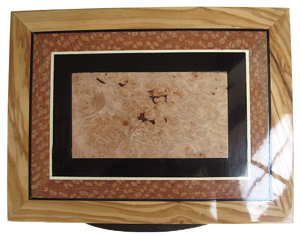 Maple burl center framed in African blackwood, lacewood and Mediterranean olive box top - Handmade wood keepsake box
