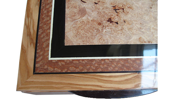 Maple burl center framed in African blackwood, lacewood and Mediterranean olive box top close up