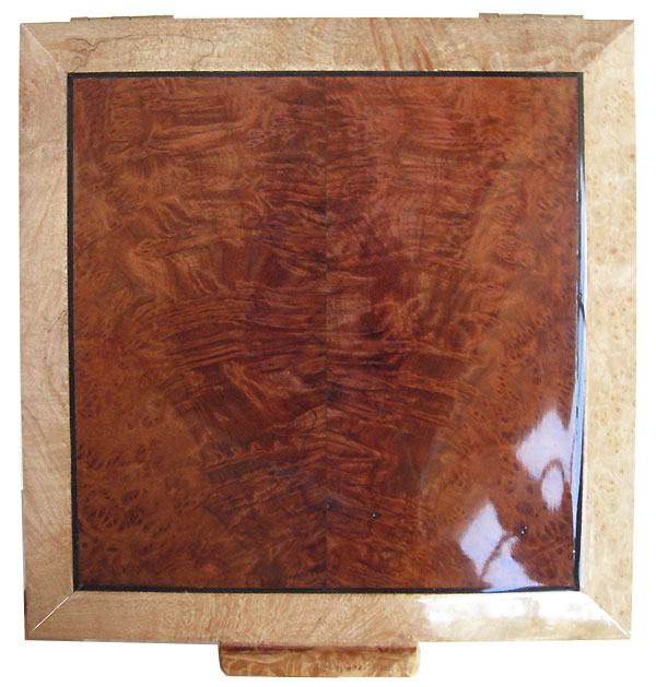 Redwood burl center framed in maple burl box top - Handcrafted wood keepsake box
