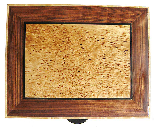 Masur birch framed in Brazilian kingwood box top - Handmade wood box - Decorative keepsake box