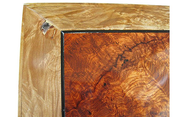 Amboyna burl center top framed in spalted maple burl box top - Left back corner close up