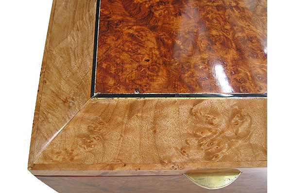 Amboyna burl center top framed in maple burl box top - left front corner close up