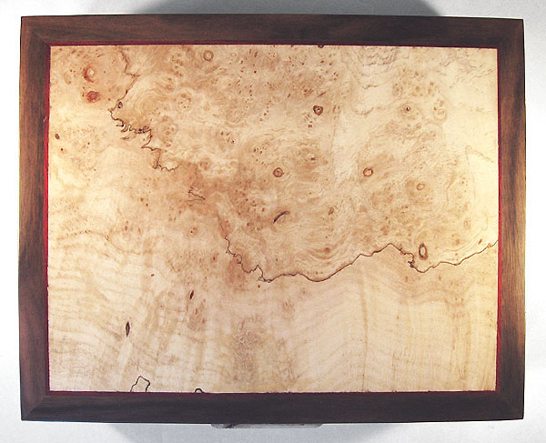 Spalted maple burl framed box top - Decorative wood men's valet box