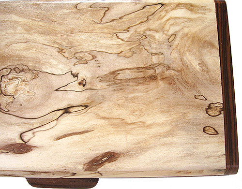 Spalted maple burl box top - close up