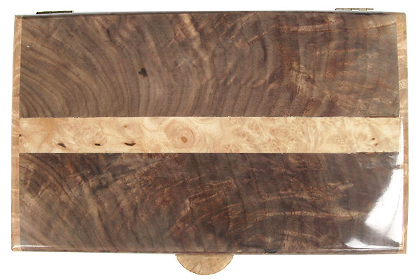 Claro walcut box with maple burl band inlaid in center