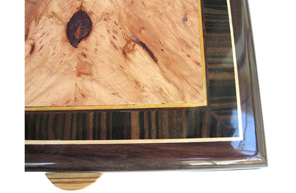 Maple burl center framed in macassar ebony and East  Indian rosewood with Ceylon satinwood and holly stringing box top close up