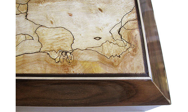 Backline spalted maple box top close up - Handmade wood decorative keepsake box