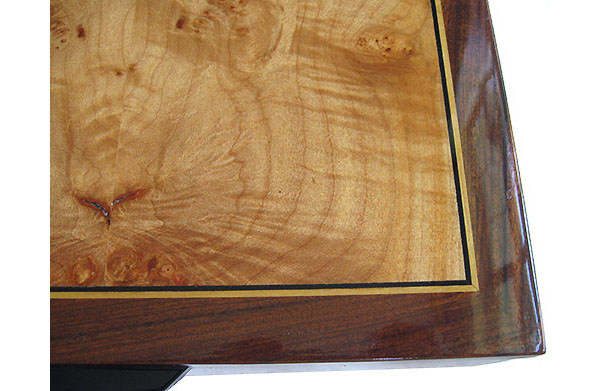 Maple burl inlaid Santos rosewood box top - close-uo