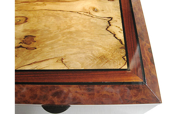 Spalted maple framed in Indian rosewood and camphor burl - Handcrafted wood box top close-up