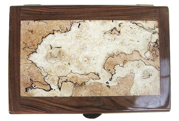 Handmade large wood valet box - Mosaic top with bird's eye maple, shedua, ebony framed in colobolo