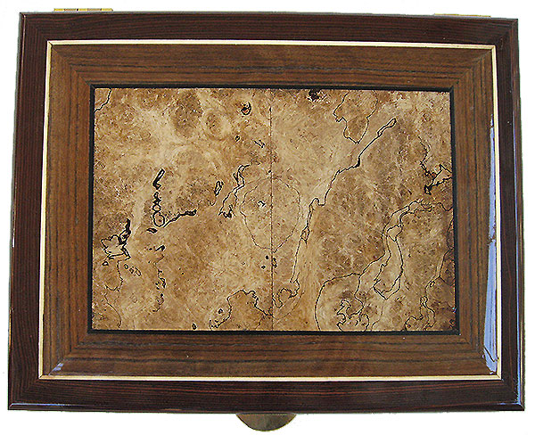 Spalted maple burl center piece framed in shedua and cocobolo box top - Handcrafted decorative wood large valet box, keepsake box, document box