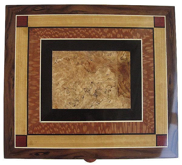 Mosaic box top of Spalted maple burl, African blackwood, lacewood, Ceylon satinwood, bloodwood - Handcrafted large valet box, documen box
