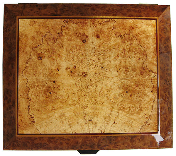 Maple burl framed in camphor burl box top - Handcrafted wood large box - Decorative men's valet, large keepsake box, document box made of Indian rosewood